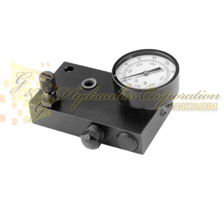 307281 SPX Power Team Dual Pressure Gauge Conversion Kit For Hydraulic Tester UPC #662536090032