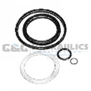 300132 SPX Power Team Repair Kit